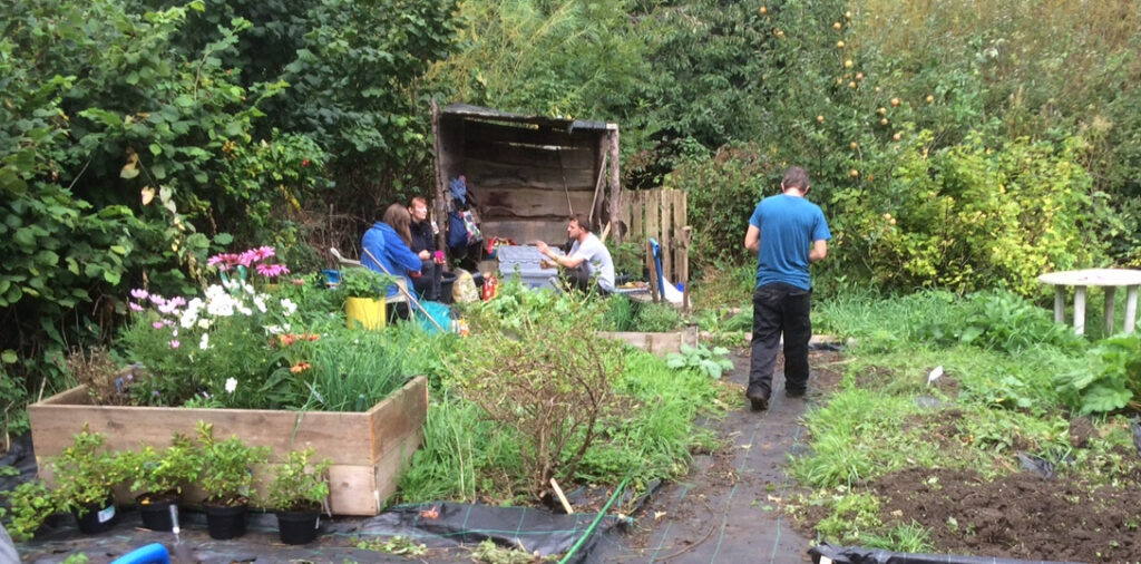 group of people in an allotment